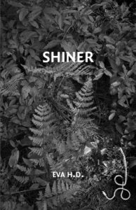 shiner_cover_web-194x300