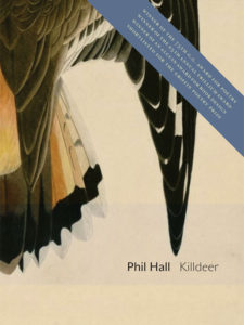 Killdeer-cover-image